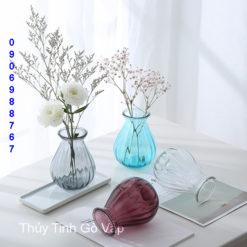 Bình hoa thủy tinh tròn bầu nhỏ xinh, bình kim cương hình trụ