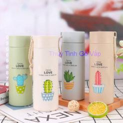 Bình nước thủy tinh bọc nhựa giữ nhiệt Cactus Love 400ml, bình cao cấp tại thuytinhgovap.com
