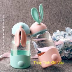 Bình nước thủy tinh nắp tai thỏ 350ml chống nóng - bình thủy tinh gò vấp